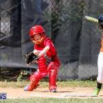 Youth Baseball Bermuda, April 19 2014-43