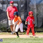 Youth Baseball Bermuda, April 19 2014-47