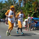 2014 Bermuda Day Marathon Derby (18)