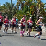 2014 Bermuda Day Marathon Derby (33)