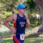 Catlin National Triathlon Running Bermuda, May 12 2014-101