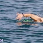 Catlin National Triathlon Swimming Bermuda, May 11 2014-106