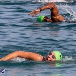 Catlin National Triathlon Swimming Bermuda, May 11 2014-120
