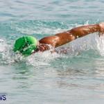 Catlin National Triathlon Swimming Bermuda, May 11 2014-139
