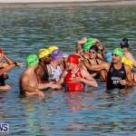 Catlin National Triathlon Swimming Bermuda, May 11 2014-39