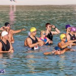 Catlin National Triathlon Swimming Bermuda, May 11 2014-43
