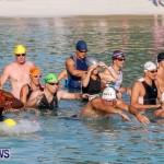 Catlin National Triathlon Swimming Bermuda, May 11 2014-44