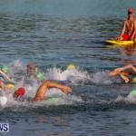 Catlin National Triathlon Swimming Bermuda, May 11 2014-50