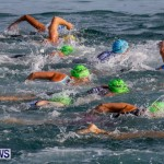 Catlin National Triathlon Swimming Bermuda, May 11 2014-51
