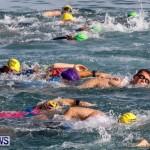 Catlin National Triathlon Swimming Bermuda, May 11 2014-54