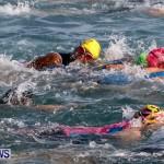 Catlin National Triathlon Swimming Bermuda, May 11 2014-55