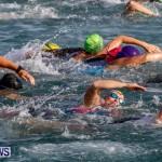 Catlin National Triathlon Swimming Bermuda, May 11 2014-56