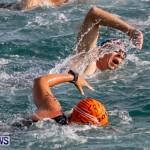 Catlin National Triathlon Swimming Bermuda, May 11 2014-59