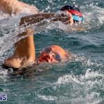 Catlin National Triathlon Swimming Bermuda, May 11 2014-60