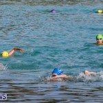 Catlin National Triathlon Swimming Bermuda, May 11 2014-62