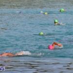 Catlin National Triathlon Swimming Bermuda, May 11 2014-63