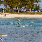 Catlin National Triathlon Swimming Bermuda, May 11 2014-64