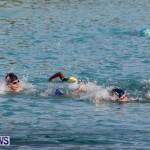 Catlin National Triathlon Swimming Bermuda, May 11 2014-66