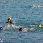 Catlin National Triathlon Swimming Bermuda, May 11 2014-67