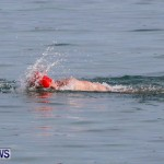Catlin National Triathlon Swimming Bermuda, May 11 2014-74
