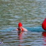 Catlin National Triathlon Swimming Bermuda, May 11 2014-75
