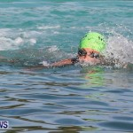 Catlin National Triathlon Swimming Bermuda, May 11 2014-83