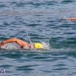 Catlin National Triathlon Swimming Bermuda, May 11 2014-85