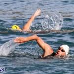 Catlin National Triathlon Swimming Bermuda, May 11 2014-88