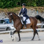 Horses Dressage Bermuda, May 3 2014-1