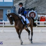 Horses Dressage Bermuda, May 3 2014-10