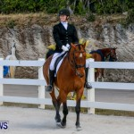Horses Dressage Bermuda, May 3 2014-12