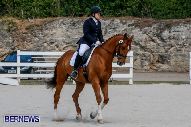 Horses Dressage Bermuda, May 3 2014-15