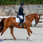 Horses Dressage Bermuda, May 3 2014-16