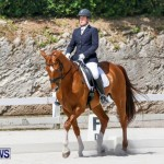 Horses Dressage Bermuda, May 3 2014-22