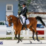 Horses Dressage Bermuda, May 3 2014-32