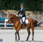 Horses Dressage Bermuda, May 3 2014-34