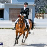 Horses Dressage Bermuda, May 3 2014-35