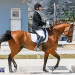 Horses Dressage Bermuda, May 3 2014-37