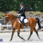 Horses Dressage Bermuda, May 3 2014-40