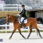 Horses Dressage Bermuda, May 3 2014-41