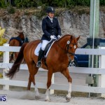 Horses Dressage Bermuda, May 3 2014-5