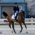 Horses Dressage Bermuda, May 3 2014-8