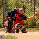 YAO Youth Baseball Bermuda, May 3 2014-10