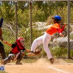 YAO Youth Baseball Bermuda, May 3 2014-18