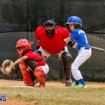 YAO Youth Baseball Bermuda, May 3 2014-84