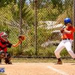 YAO Youth Baseball Bermuda, May 3 2014-9