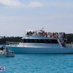 Edward Cross Long Distance Comet Sailing Race Bermuda, June 16 2014-61