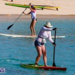 Paddle Board Races at Fort St Catherine Beach Bermuda, June 22 2014-42