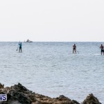PaddleBoarding Bermuda, June 16 2014-42