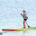 PaddleBoarding Bermuda, June 16 2014-63